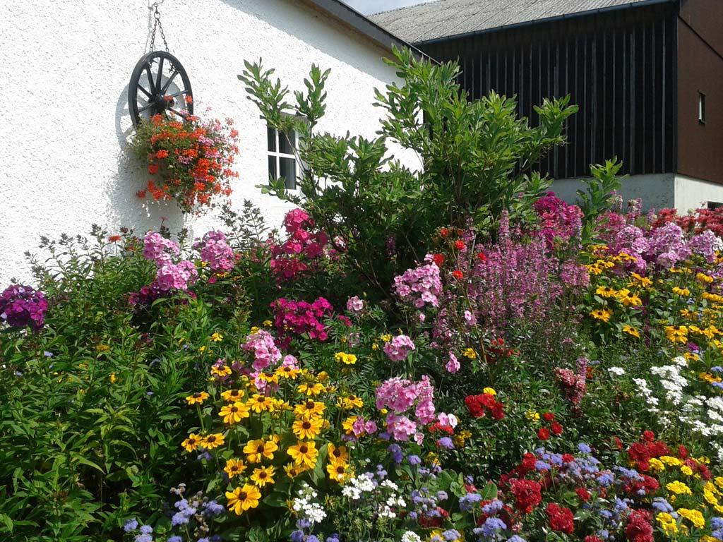 Blumenpracht in Gottersdorf